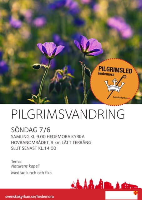Pilgrim 7 juni 2020